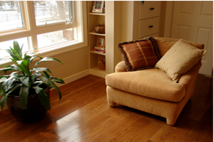 maple and oak hardwood flooring