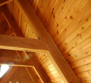 knotty tongue and groove cedar